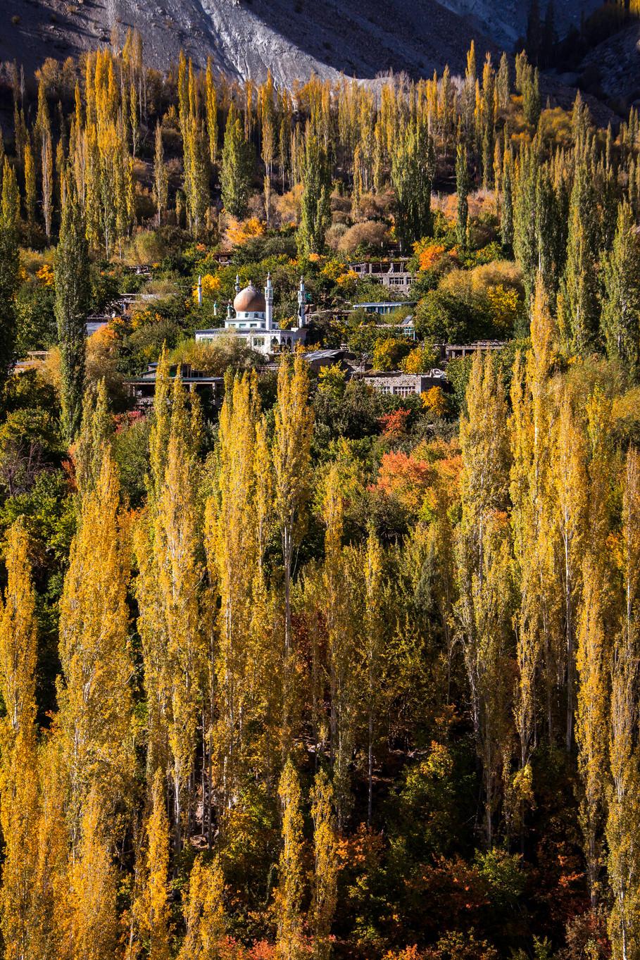 Kashmir Mosk-size.jpg