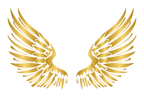 kisspng-gold-angel-wings-icon-5b5ec1c8f3