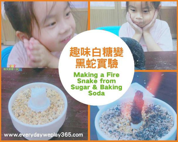 趣味白糖變黑蛇實驗 - 兒童化學/廚房科學