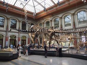小小恐龍迷看過來!盤點全球最具特色的8個恐龍博物館