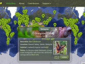 自然之聲地圖:線上免費聆聽全球400多個森林聲景音樂