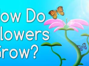 6個帶小朋友認識花朵生命週期的YouTube影片