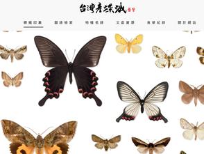親子戶外踏青好工具:台灣產蝶蛾圖鑑 4800多筆物種免費查詢