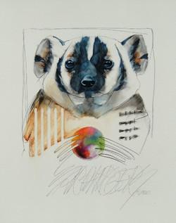 Badger - SOLD!