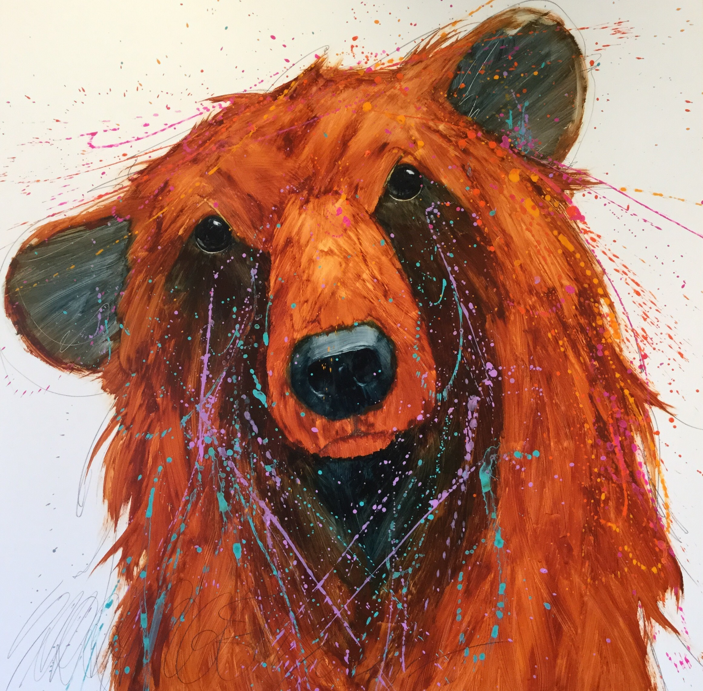 Freshly Scrubbed Bear - New Prints!