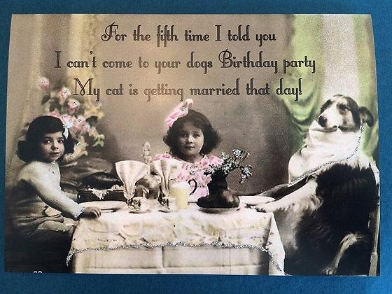 Greeting Card - Dog Birthday