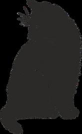 cat-2074514_640.png