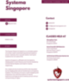 systema singapore.png