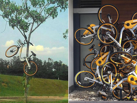 Singapore Law - In the aftermath of OBike, do we need class action lawsuits?