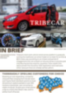 Tribecar Full 1.png