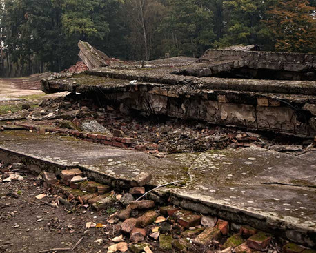 ruins-of-crematories-and-gas-chambers-4.jpg