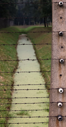fences-and-barbed-wire-2.jpg