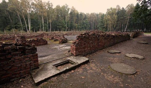 ruins-of-crematories-and-gas-chambers-2.jpg