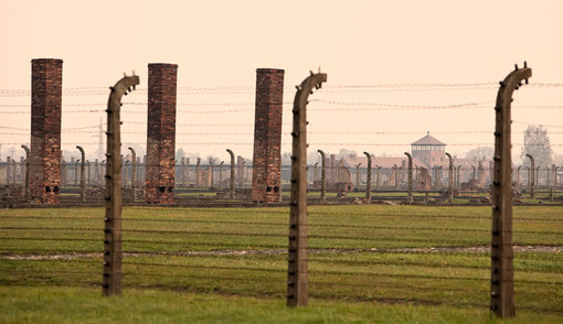 chimneys-fences-and-barbed-wire.jpg