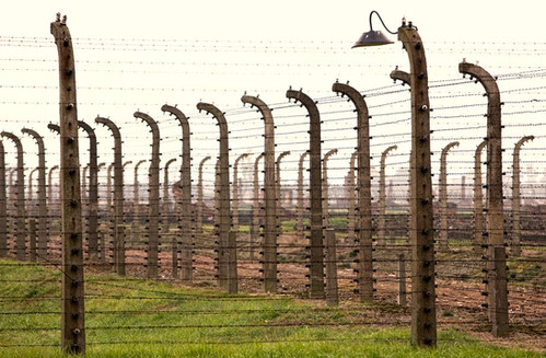barbed-wire-2.jpg