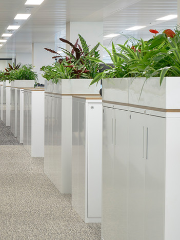 Goodwood Plus cupboards with MFC tops and planters