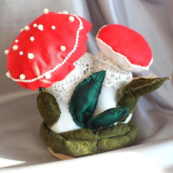 The Toadstools - A Mushroom Family