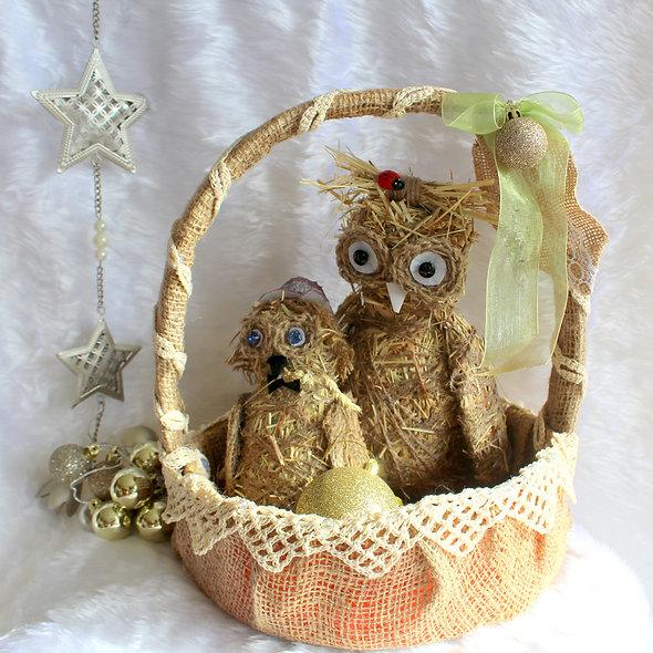 Mama & Baby Owl