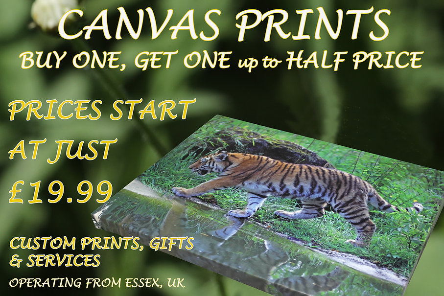 Canvas prints in Essex, UK, by Studio 55 Photography