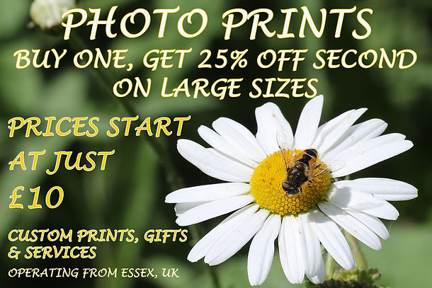 Photo print deal, Essex, UK, online