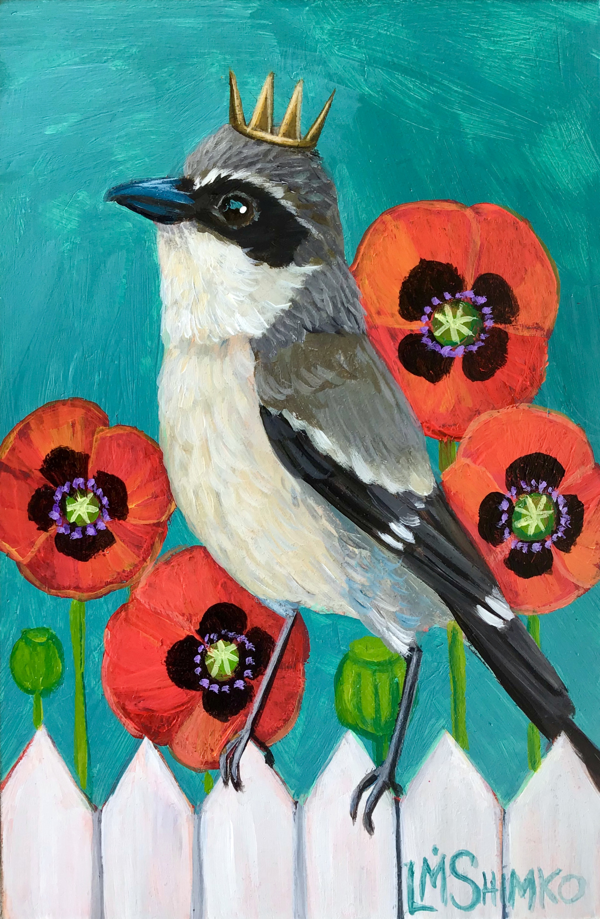 Loggerhead Shrike Poppies