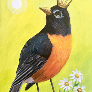 Spring Robin King