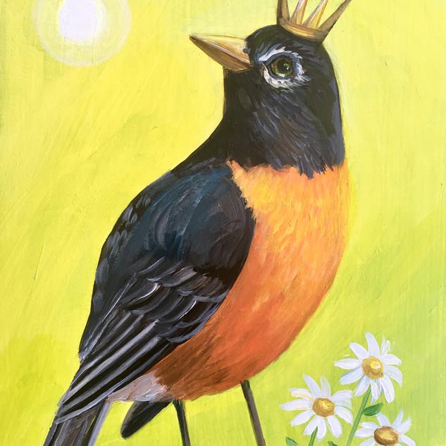 Spring Robin King