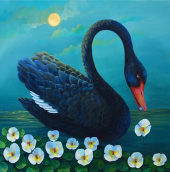 Black Swan Moon