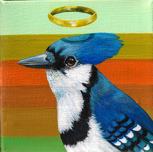 Blue Jay Halo