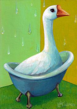 Goose Tub