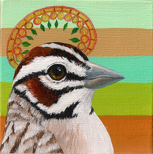 Song Sparrow Halo