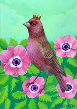 Rose Finch Flowers