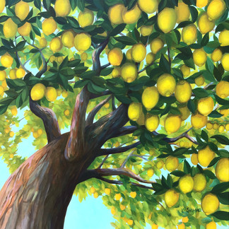 Lemon Canopy
