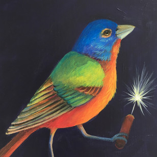 Painted Bunting Flare