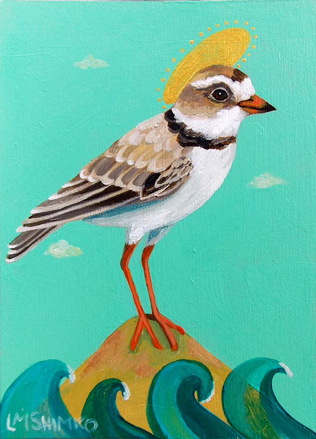 Piping Plover Halo