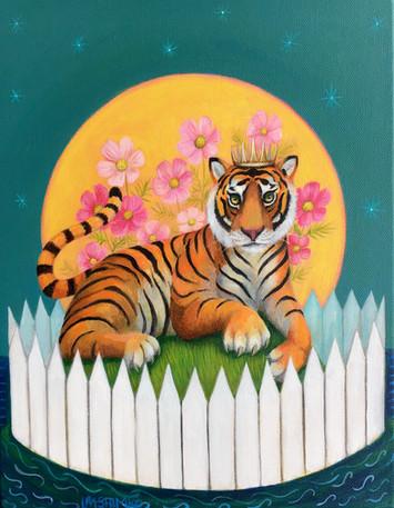 Tiger Cosmos