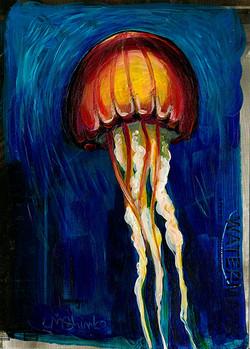 Jellyfish Sketch IV