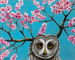 Spring Wisdom