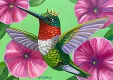 Hummingbird Pink Petunias.jpg