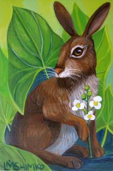 Swamp Rabbit I