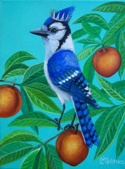 Royal Blue Jay Peaches