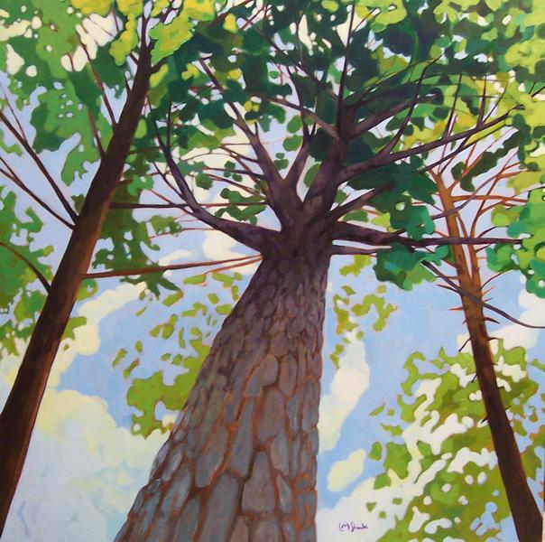 Old Hemlock Canopy 1