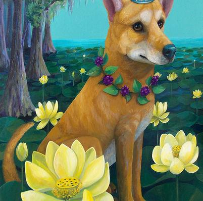 pariah dog, american lotus