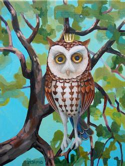 Owl Prince II