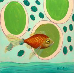 Goldfish Blue Green II