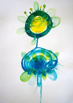 aquatic circle sketch 3