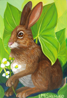 Swamp Rabbit 2