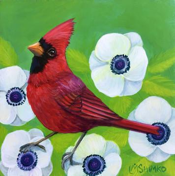 White Flower Cardinal (mister).jpg