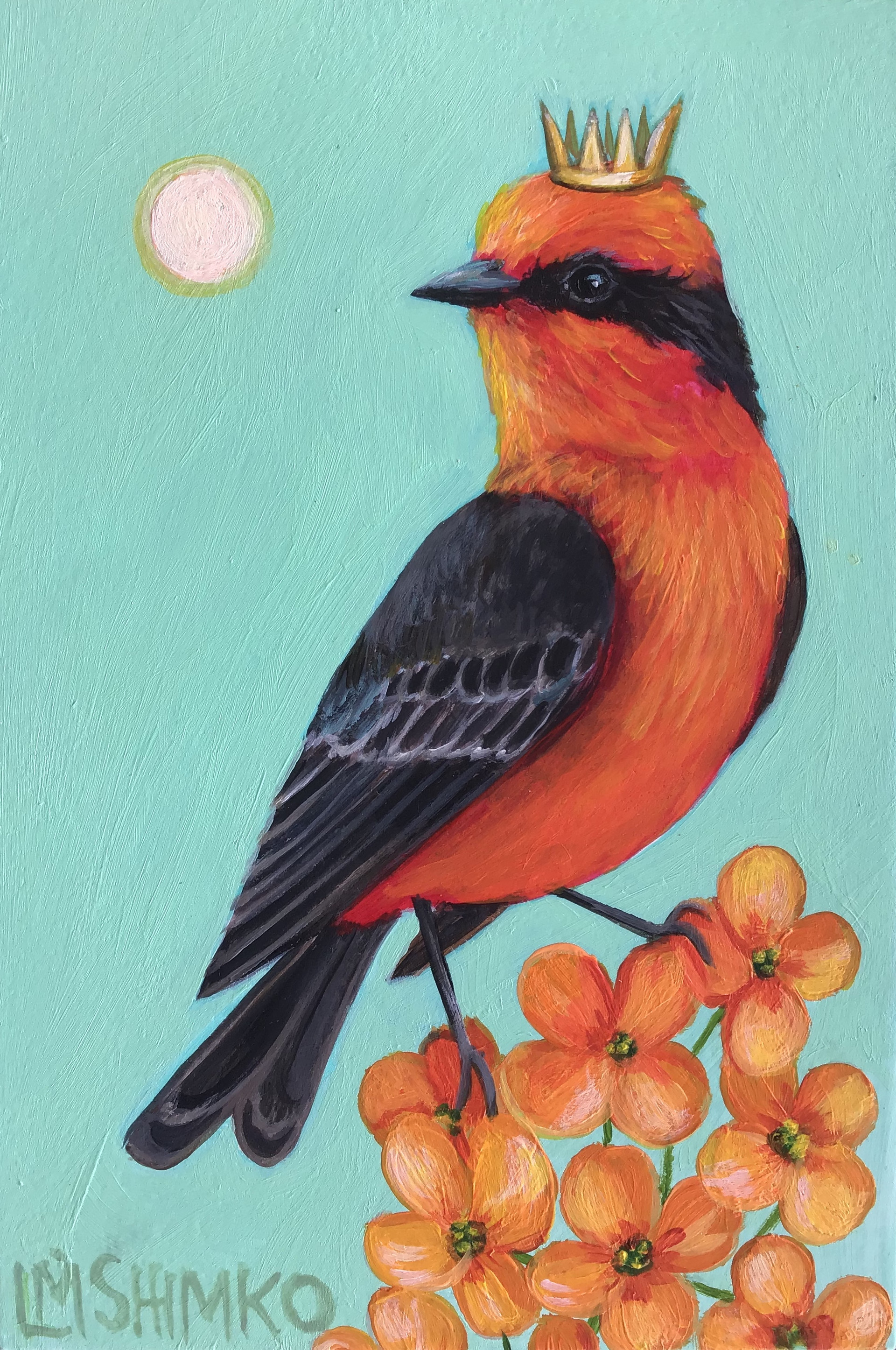 Vermilion Fly-catcher King