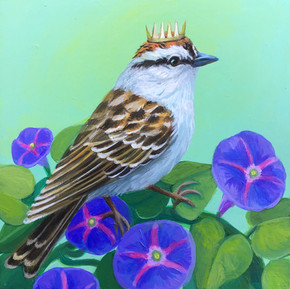 Chipping Sparrow Morning Glory